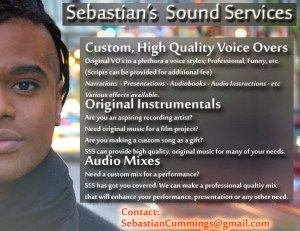 Sebastian Sound Services audio mixing