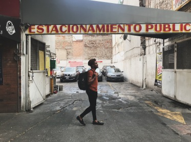 Mexico City Roma Norte